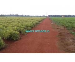 12 Acre Agriculture Land for Sale Near Jogipet
