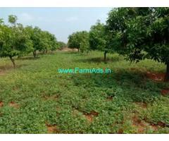 5 Acres Agriculture Land for Sale Near Ramapuram Mandal