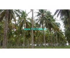 9 Acres Agriculture Land For Sale Near mysore airport