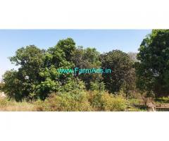 19 Gunta Agriculture Land for Sale Near Karjat