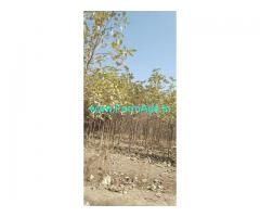 24 Acres Agriculture Land for Sale Near Javkhede,Hingone