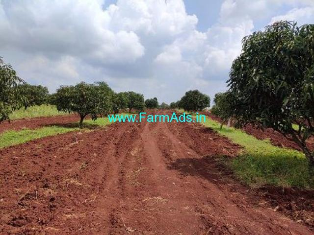 40 Gunta Agriculture Land for Sale Near Shinoli