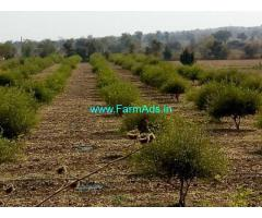 7 Acre Agriculture Land for Sale Near Rohankhed
