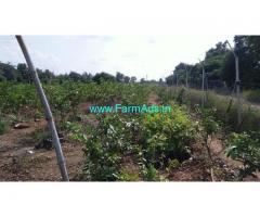 20 Cents Agriculture Land for Sale Near Arakkonam