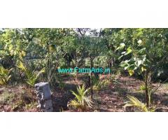 5.5 Acre Agriculture Land for Sale Near Mudigere