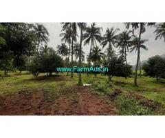40 Cents Agriculture Land for Sale Near Tirunelveli