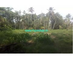 40 Cent Farm Land For Sale In Vaikom