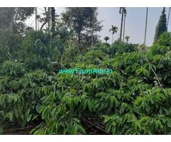 2.5 Acre Agriculture Land for Sale Near Kalpetta