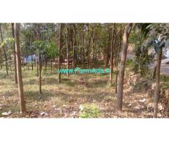 50 Cent Agriculture Land For Sale In Kutting