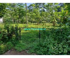 50 cents Agriculture Land For Sale In Vallikunnam