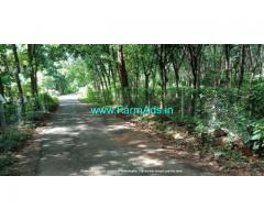 2.75 Acre Agriculture Land for Sale Near Vaniyamkulam