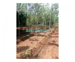 5.5 Acre Agriculture Land for Sale Near Katnalli