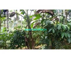2.50 Acre Agriculture Land for Sale Near Kaniyambetta