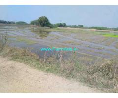 5 Acre Agriculture Land for Sale Near Mulkanoor