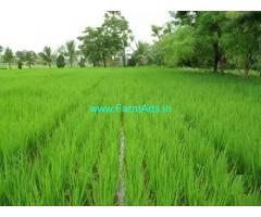 Sagar Canal Irrigated 3 Acres Farm Land for Sale Near Ponnur