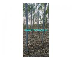 45 Acres Farm Land for Sale in Chinnayapalli