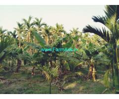 12 Acre agriculture Land for sale near Hiriyur