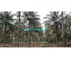 11 Acre Agriculture Land for Sale Near Periyapattia