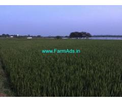1.20 Acre Agriculture Land for Sale Near Seethanjeri