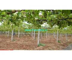 16 Acres Grapes Farm Land For Sale near Penukonda,KIA Motors