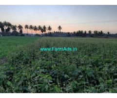 8 Acre Agricultural Land For Sale In Jallipatti
