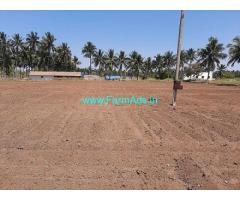 2.60 Acre Agricultural Land For Sale In Palladam