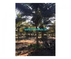 2.5 Acre Agriculture Land for Sale Near Periyapatti