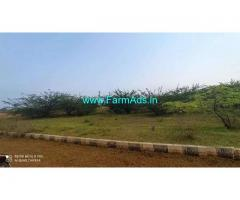 40 Cent Agriculture Land For Sale in Tagarapuvalasa