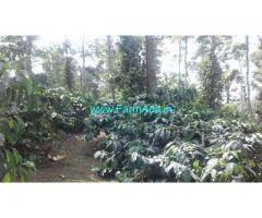 7.5 Acre Coffee Land for Sale Near Sakaleshpur