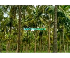 5 Acre Farm Land For Sale In Pollachi