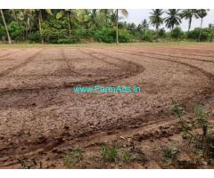 2.25 Acre Agriculture Land For Sale In Jallipatti