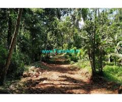 2.31 Acre Agriculture Land For Sale In Thachingadanam