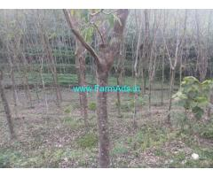 70 Cents Rubber Land For Sale In Vithura,Chettachal road