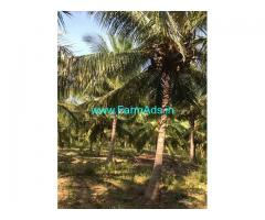 4 Acre Agriculture Land for Sale Near Kudimangalam