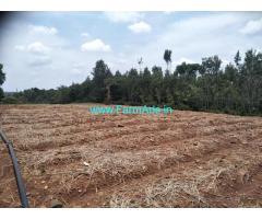 4 Acre Agriculture Land for Sale Near Chikmagalur