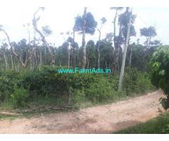 3.09 Acre Coffee Estate for sale in Sakaleshpur