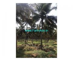 6 Acre Agriculture Land for Sale Near Periyapatti