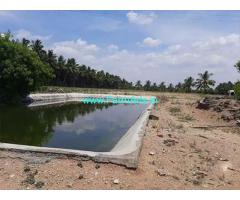 38 Acre Agriculture Land for Sale Near Palladam