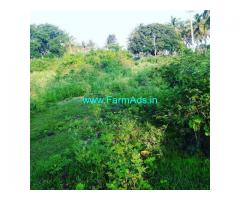 4 Gunta Agriculture Land for Sale Near Chikmagalur