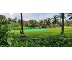 1.5 Acre Agriculture Land for Sale Near Belthangady