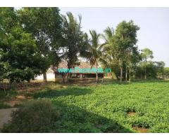 5.5 Acre Agriculture Land for Sale Near Thiruvallur
