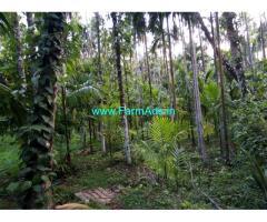 Agriculture land for sale Kadaba - Dakshin Kannada