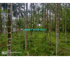 3 acre + 1 acre farm land for sale in karkala - Udupi