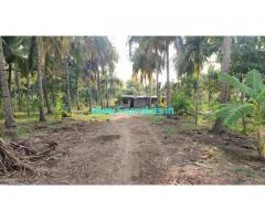 7.5 Acres coconut farmland for sale at Madhugiri