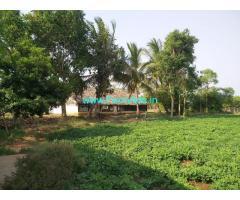 5.5 acres farm house mango garden next to thiruvallur toll plaza