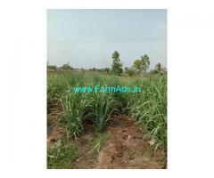 2 Acre Farm Land For Sale In Malapur,Jamkhandi Mudhol main road