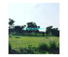 6 Acre Agriculture Land for Sale Near Belur
