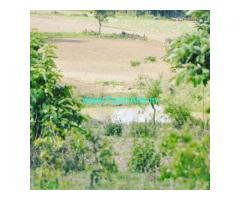 12 Acre Agriculture Land for Sale Near Belur