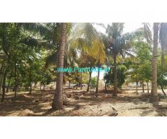 9.5 Acres Agriculture Land For Sale near Vadamdurai