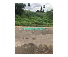 71 Cent Agriculture Land for Sale Near Jallipati